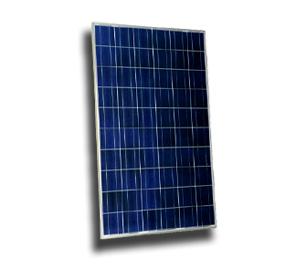 Sharp 224 watt solar panel